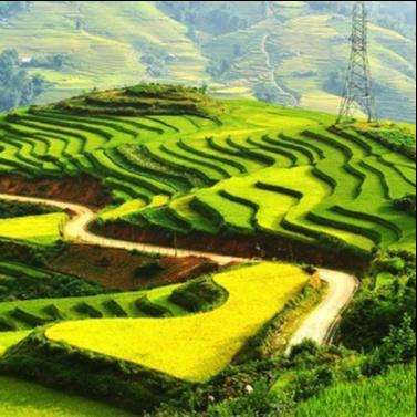 Đất nước và Con người Việt Nam