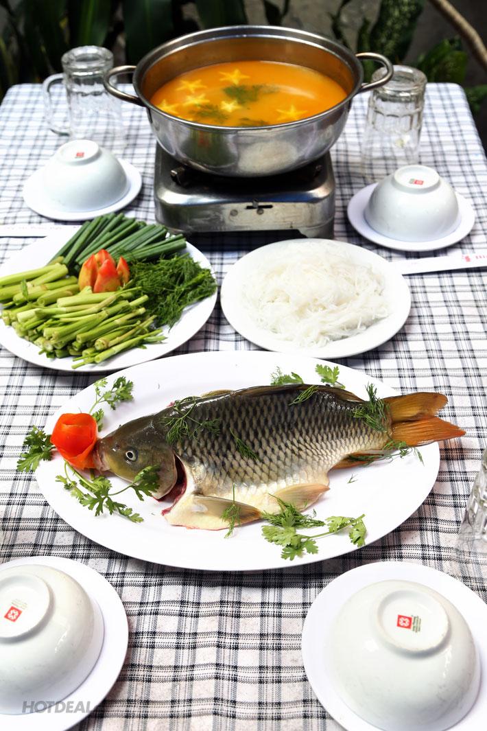 Mắc bệnh này ăn cá chép có thể chết người
