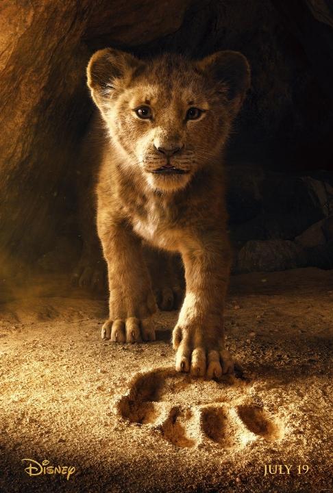 Sư tử bố ngủ quên để bầy chó hoang suýt bắt mất con - VnExpress