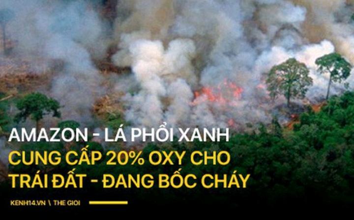 8 tháng 100.000 vụ cháy, thảm họa tầm cỡ địa cầu: Đây là tình hình cháy rừng đang diễn ra tại Amazon vào lúc này