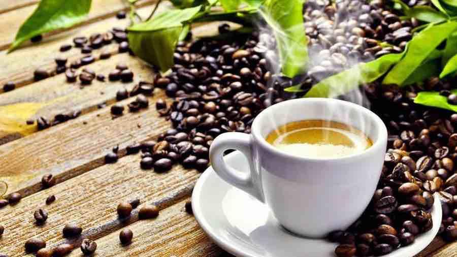 Giá cà phê tuần qua: Vì sao giá cà phê đồng loạt giảm kỷ lục?