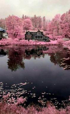 """Ngôi làng """"không đường đi"""", nhà nhà phủ đầy hoa tươi, đẹp như trong cổ tích (vinhthuy le) — Bức Tranh Vân Cẩu"""