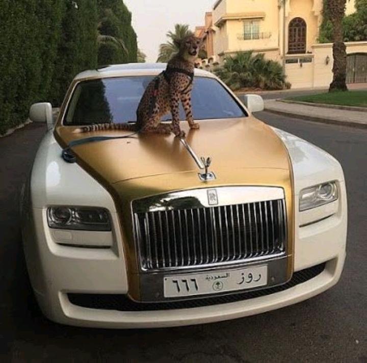 Bộ sưu tập Rolls Royce
