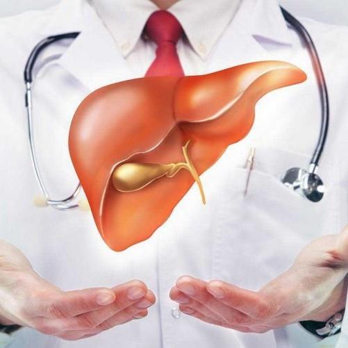 Một số bài thuốc giải độc gan từ thiên nhiên