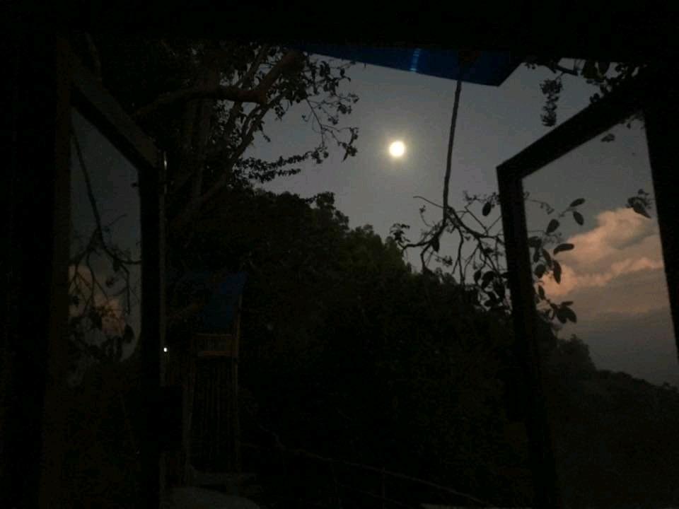 Ngẫu hứng đêm trăng thanh