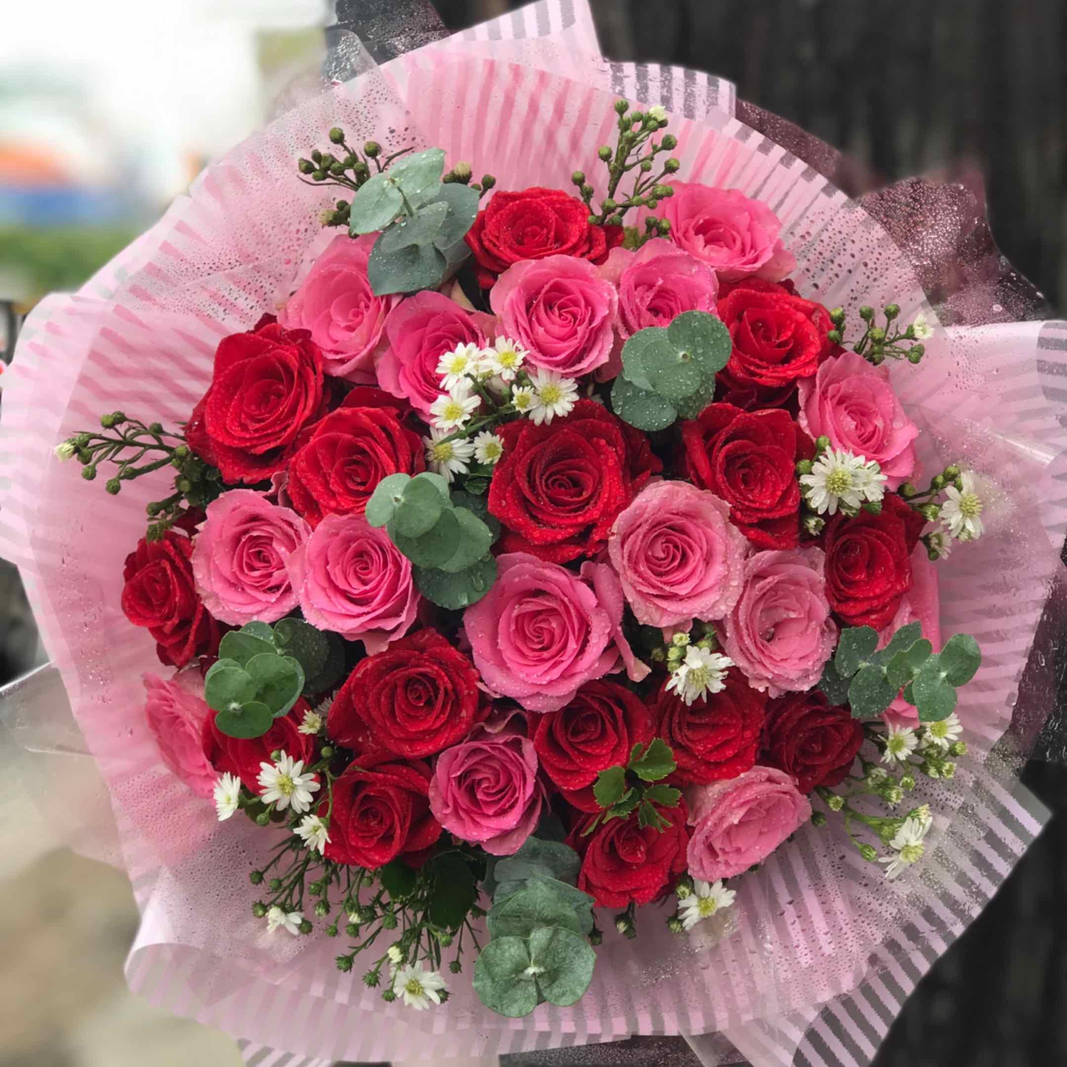 Công Danh - Tôi hỏi chú sâu xanh Lá có gì mà thích ..... Hoa lá Flowers 876 nguyễn kiệm, p3. gò Vấp