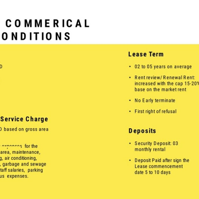 Standard Commerical Leasing Conditions
